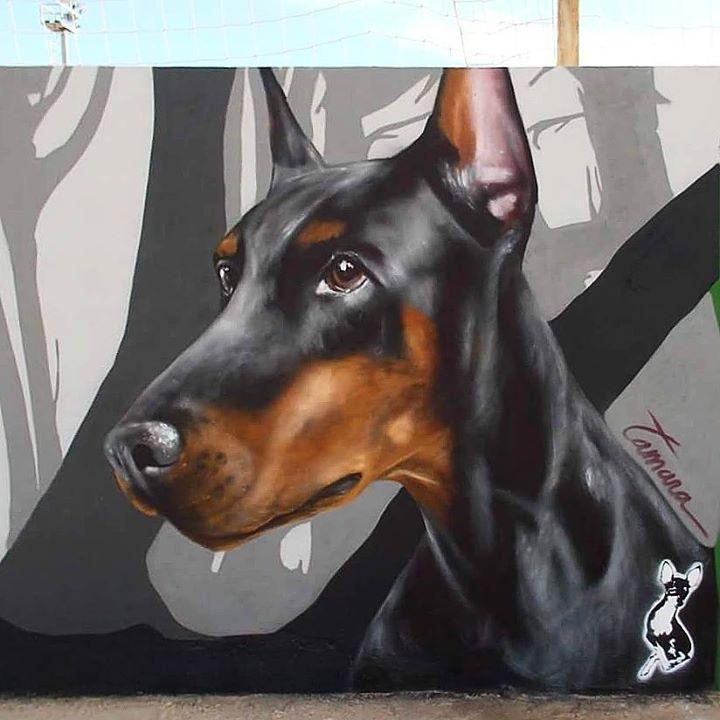 Dogs III, Xekin 2015.